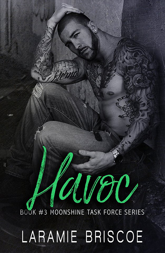 Havoc by Laramie Briscoe, Laramie Briscoe author, Bryan Snell model, CJC Photography, Florida photographer, book cover photographer, romance book cover photographer