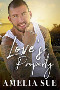 CJC Photography, Love's Property by Amelia Sue, Bryan Snell, Boston photographer, book cover photographer, romance book cover photographer