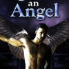 Once An Angel by Amanda Mackey, CJC Photography, Boston photographer, book cover photographer, romance book cover photographer, Adam Roc Rose