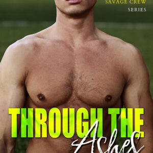 Through the Ashes by J. Wolf, J. Wolf author