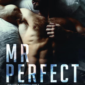 Mr Perfect by Aimee Nicole Walker, Aimee Nicole Walker romance author, Brock Grady model, CJC Photography book cover photographer